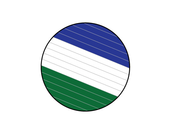 Cascadia Treibball Club